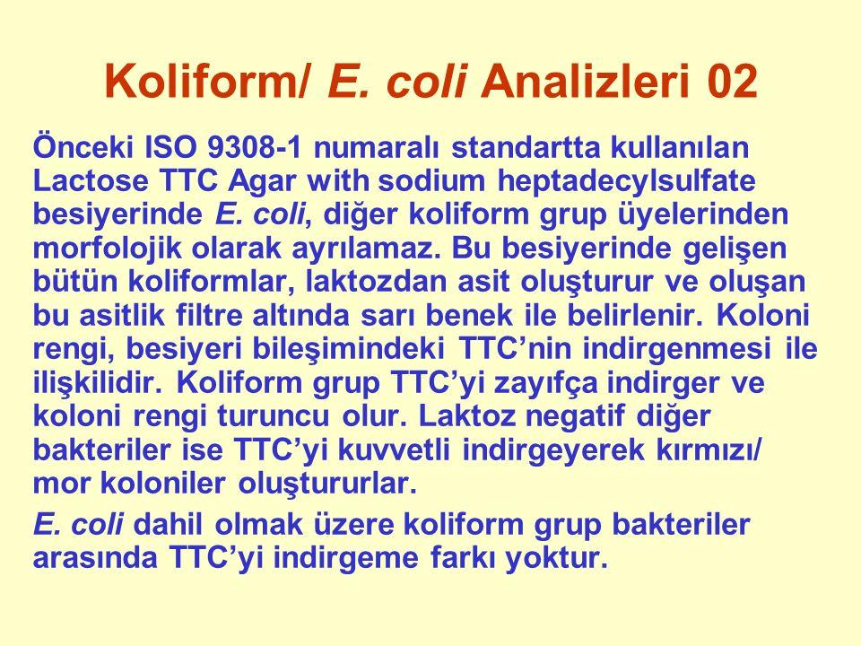 Koliform/ E. coli Analizleri 02