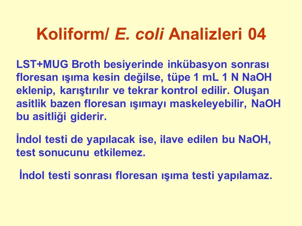 Koliform/ E. coli Analizleri 04