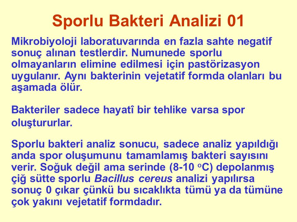 Sporlu Bakteri Analizi 01