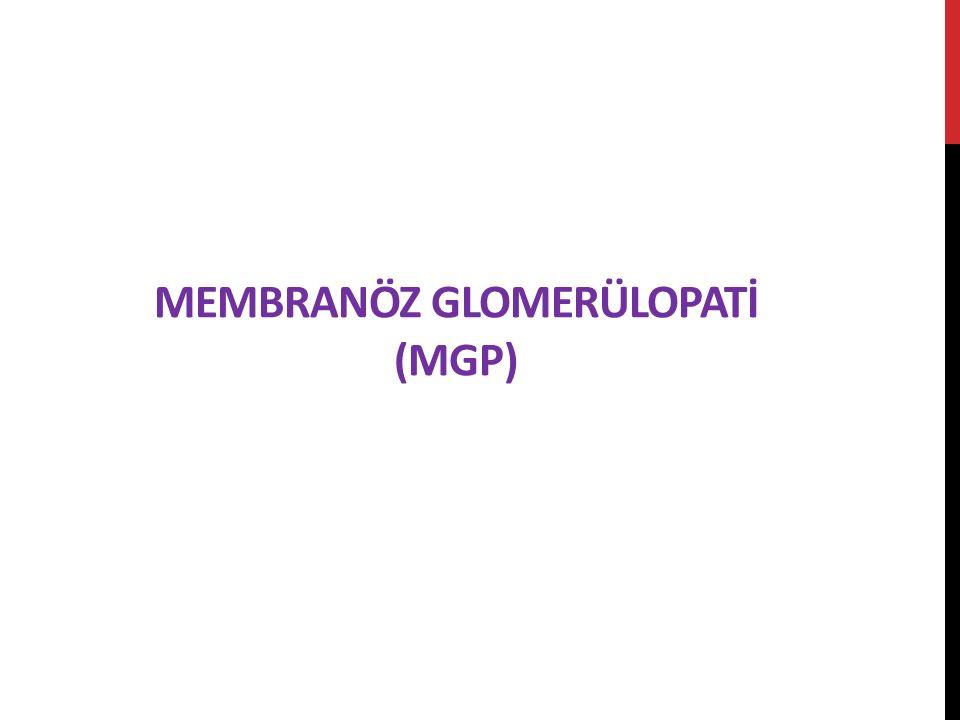 Membranöz Glomerülopatİ (MGP)