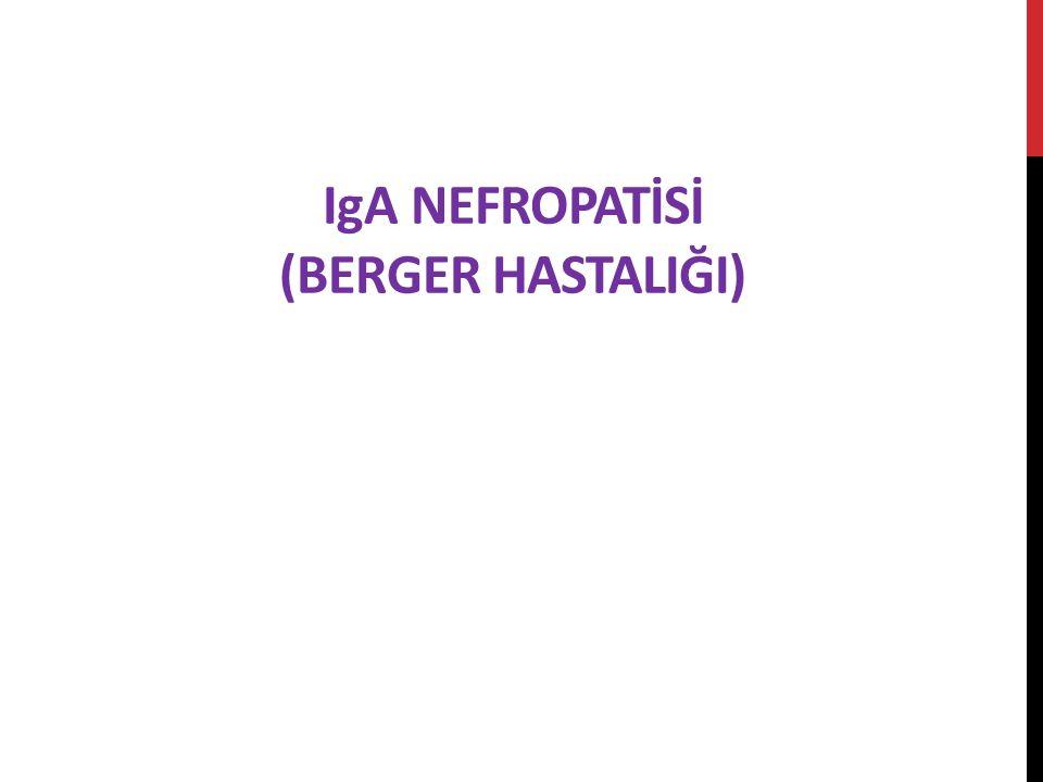 IgA NEFROPATİSİ (Berger HastalIğI)