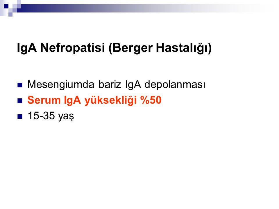 IgA Nefropatisi (Berger Hastalığı)