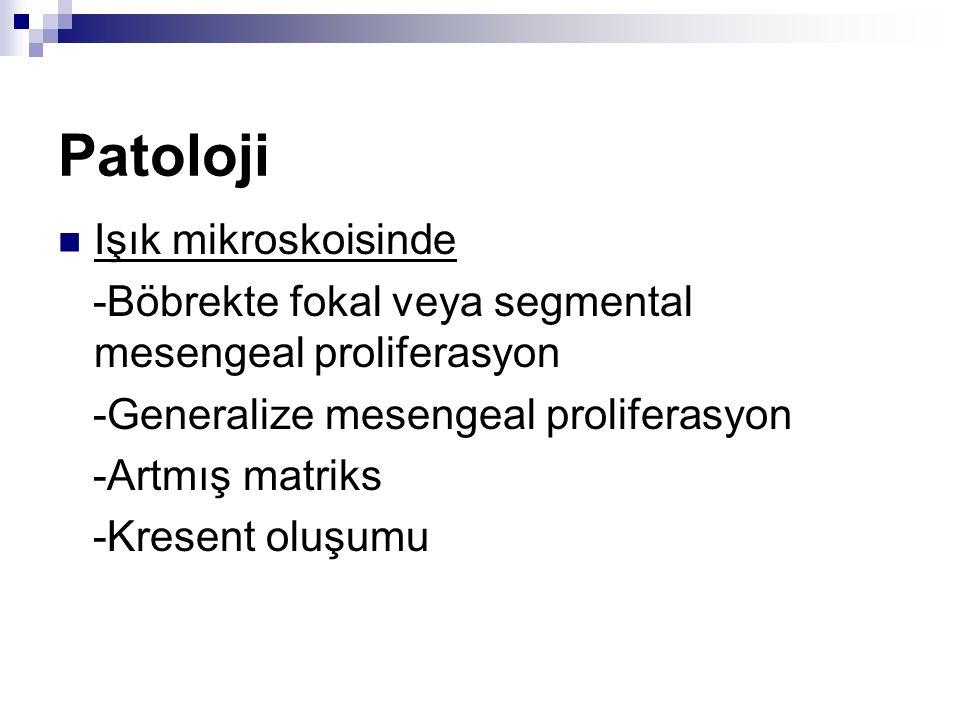 Patoloji Işık mikroskoisinde