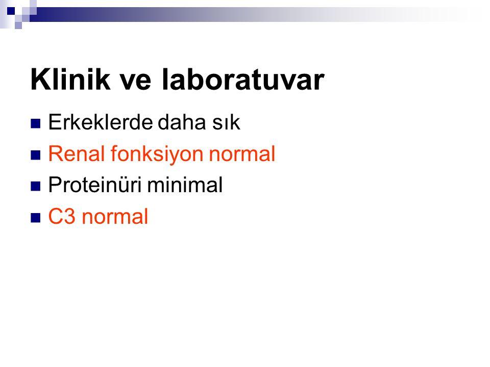 Klinik ve laboratuvar Erkeklerde daha sık Renal fonksiyon normal