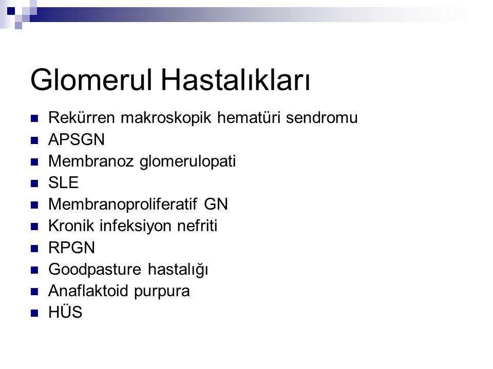 Glomerul Hastalıkları
