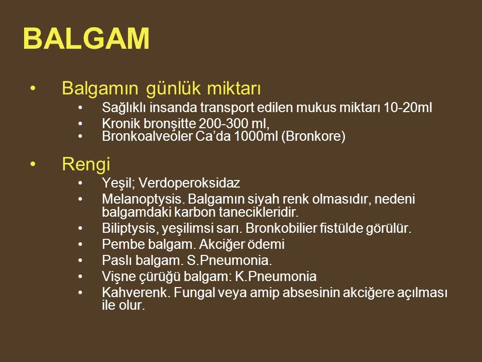 BALGAM Balgamın günlük miktarı Rengi