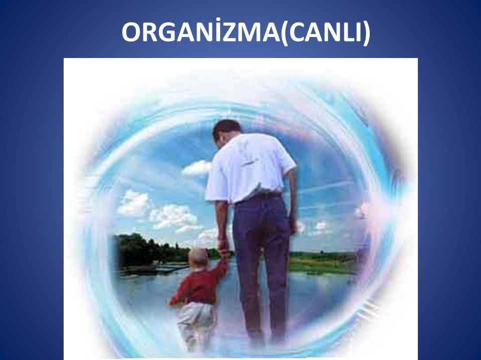 ORGANİZMA(CANLI)