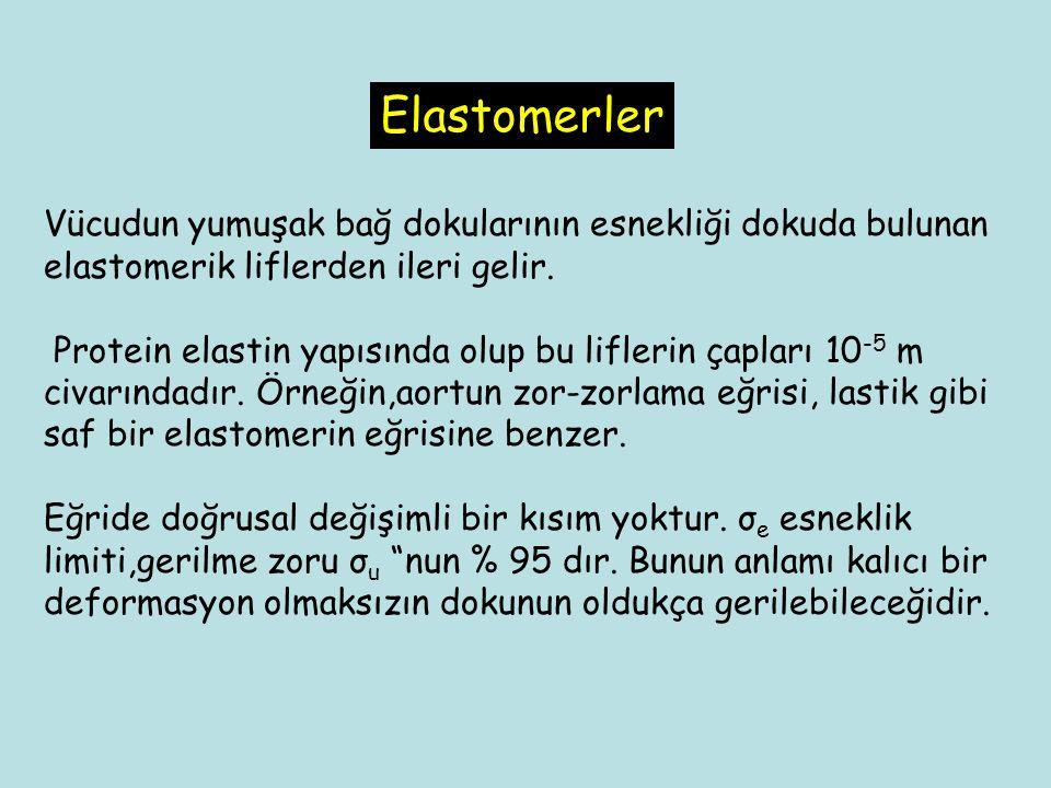 Elastomerler Vücudun yumuşak bağ dokularının esnekliği dokuda bulunan elastomerik liflerden ileri gelir.