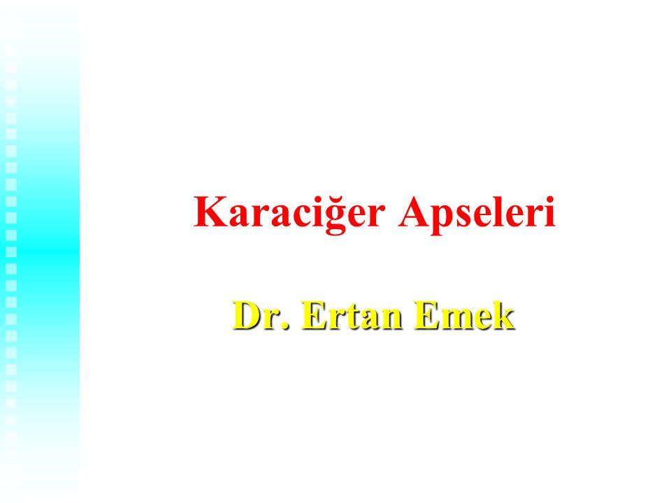 Karaciğer Apseleri Dr. Ertan Emek