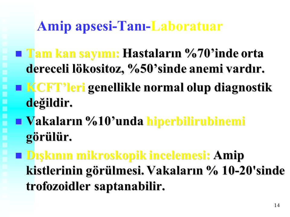 Amip apsesi-Tanı-Laboratuar