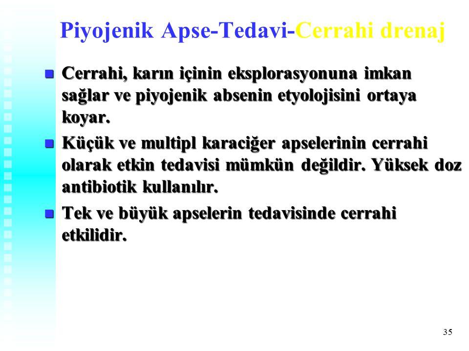Piyojenik Apse-Tedavi-Cerrahi drenaj