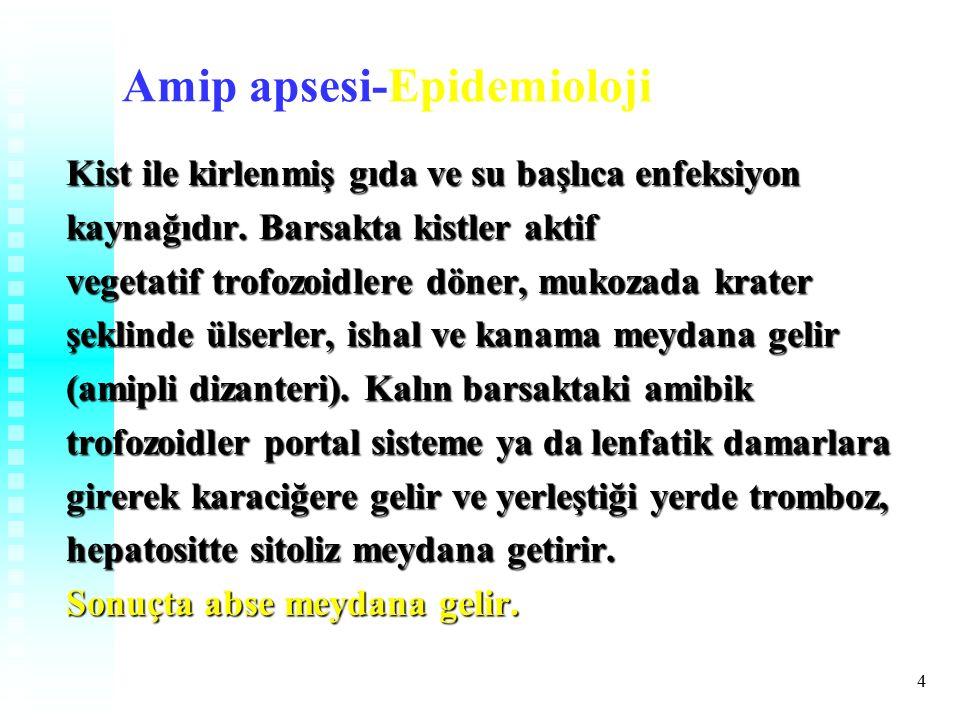 Amip apsesi-Epidemioloji