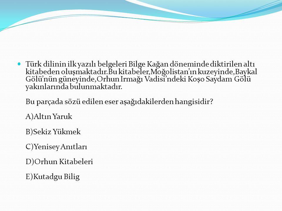 Türk dilinin ilk yazılı belgeleri Bilge Kağan döneminde diktirilen altı kitabeden oluşmaktadır.Bu kitabeler,Moğolistan'ın kuzeyinde,Baykal Gölü'nün güneyinde,Orhun Irmağı Vadisi'ndeki Koşo Saydam Gölü yakınlarında bulunmaktadır.