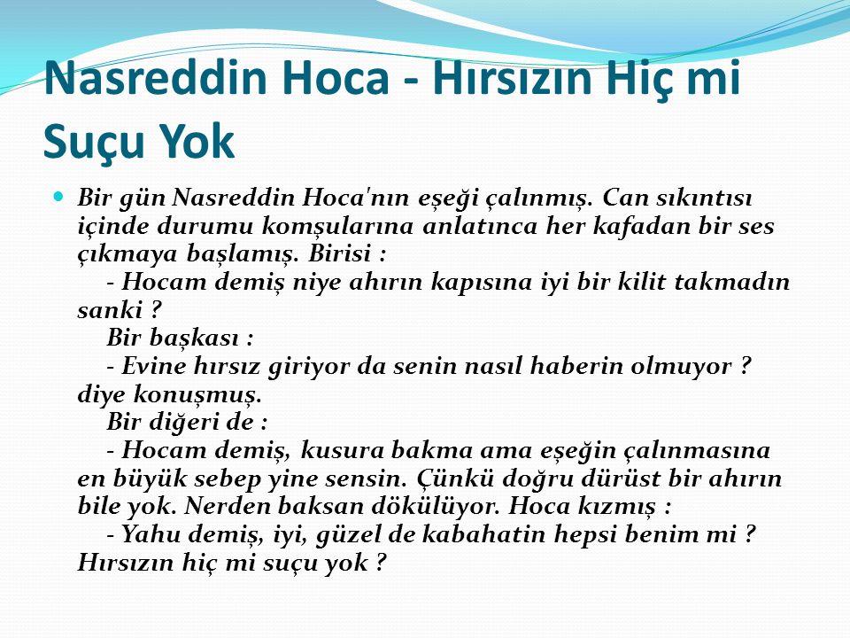 Nasreddin Hoca - Hırsızın Hiç mi Suçu Yok