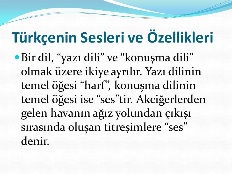 Türkçenin Sesleri ve Özellikleri