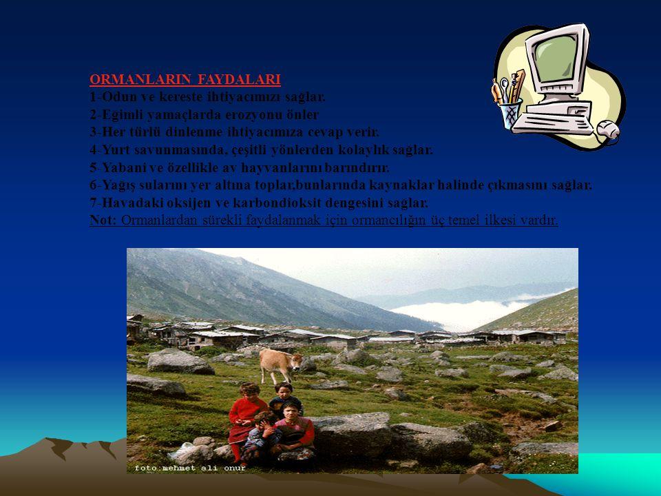 ORMANLARIN FAYDALARI 1-Odun ve kereste ihtiyacımızı sağlar. 2-Eğimli yamaçlarda erozyonu önler. 3-Her türlü dinlenme ihtiyacımıza cevap verir.