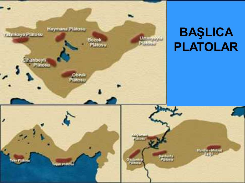 BAŞLICA PLATOLAR