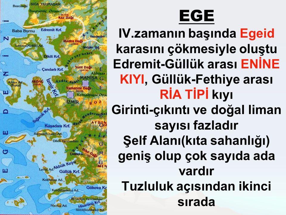 EGE IV.zamanın başında Egeid karasını çökmesiyle oluştu Edremit-Güllük arası ENİNE KIYI, Güllük-Fethiye arası RİA TİPİ kıyı Girinti-çıkıntı ve doğal liman sayısı fazladır Şelf Alanı(kıta sahanlığı) geniş olup çok sayıda ada vardır Tuzluluk açısından ikinci sırada