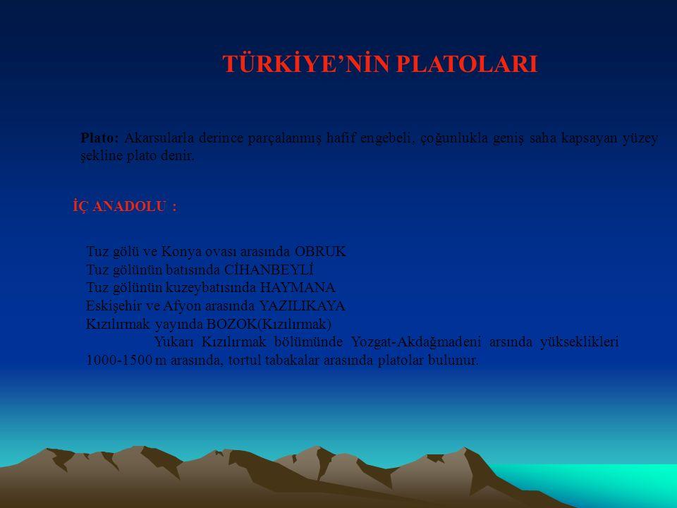 TÜRKİYE'NİN PLATOLARI