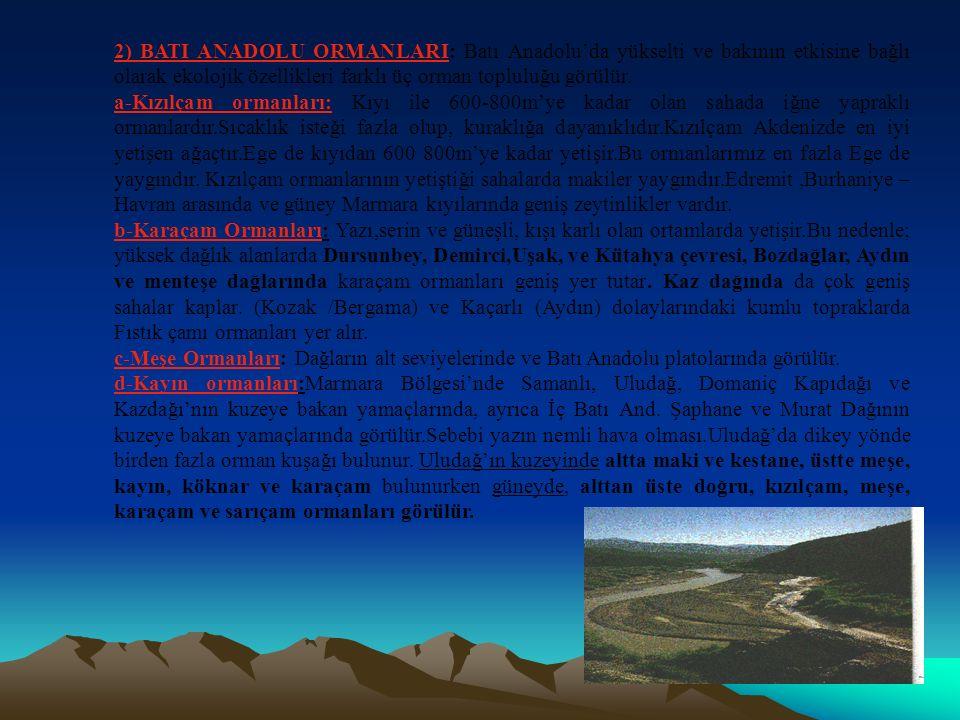 2) BATI ANADOLU ORMANLARI: Batı Anadolu'da yükselti ve bakının etkisine bağlı olarak ekolojik özellikleri farklı üç orman topluluğu görülür.