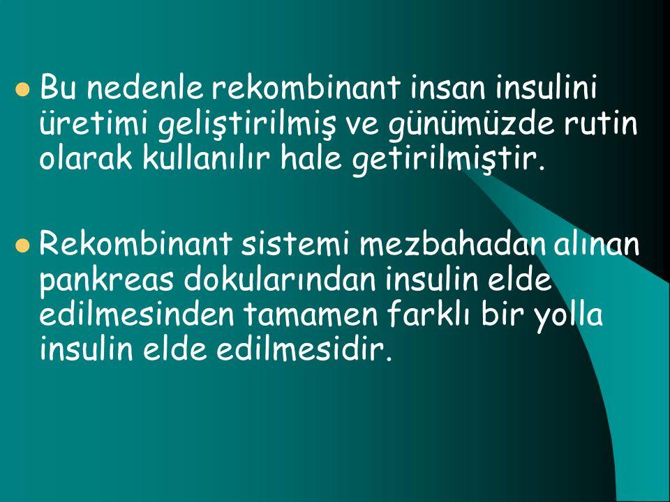 Bu nedenle rekombinant insan insulini üretimi geliştirilmiş ve günümüzde rutin olarak kullanılır hale getirilmiştir.