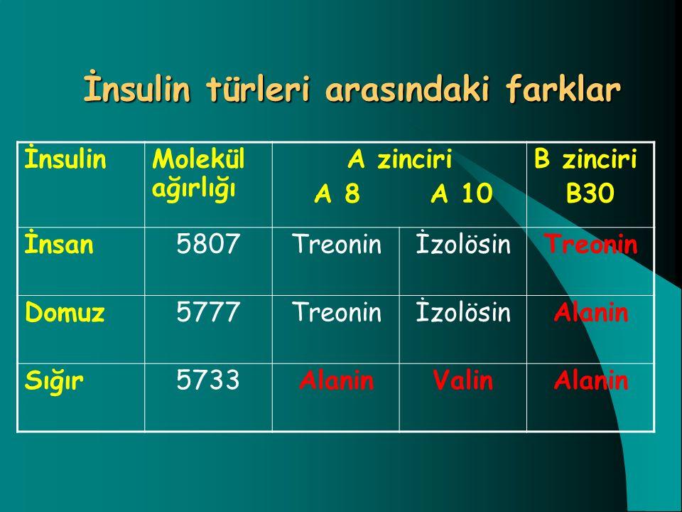 İnsulin türleri arasındaki farklar