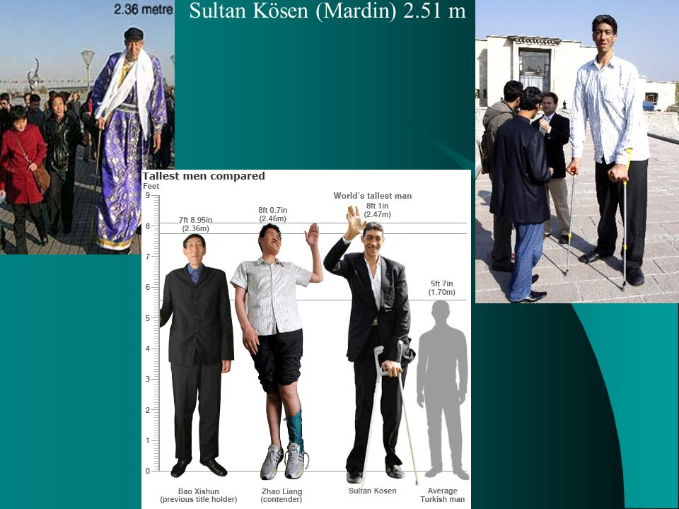 Sultan Kösen (Mardin) 2.51 m