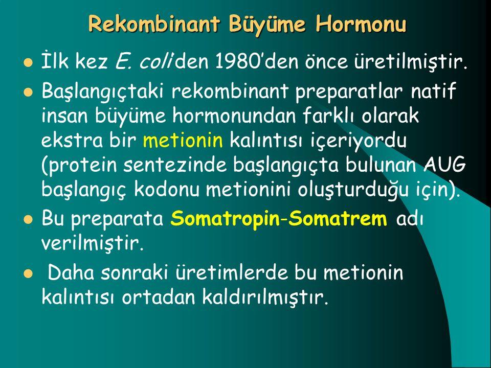 Rekombinant Büyüme Hormonu
