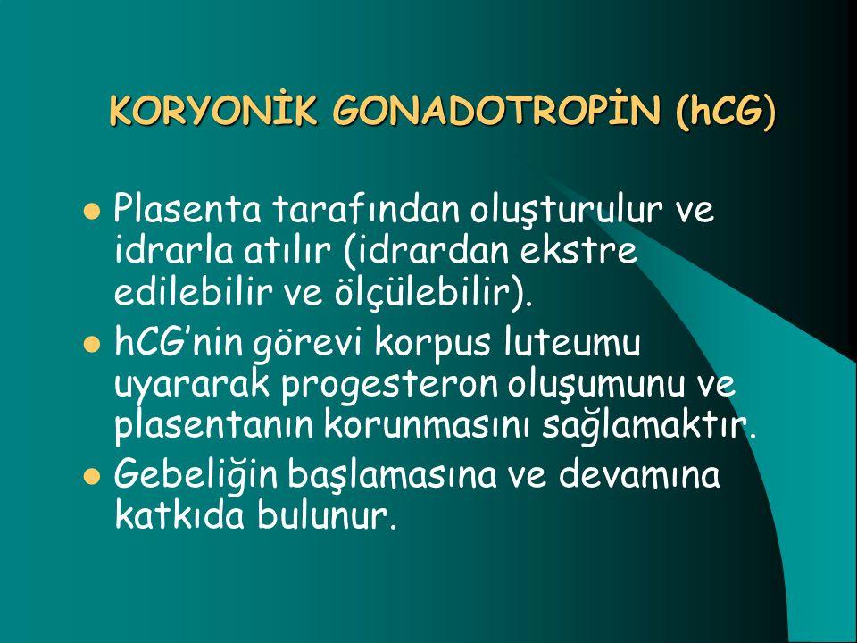 KORYONİK GONADOTROPİN (hCG)
