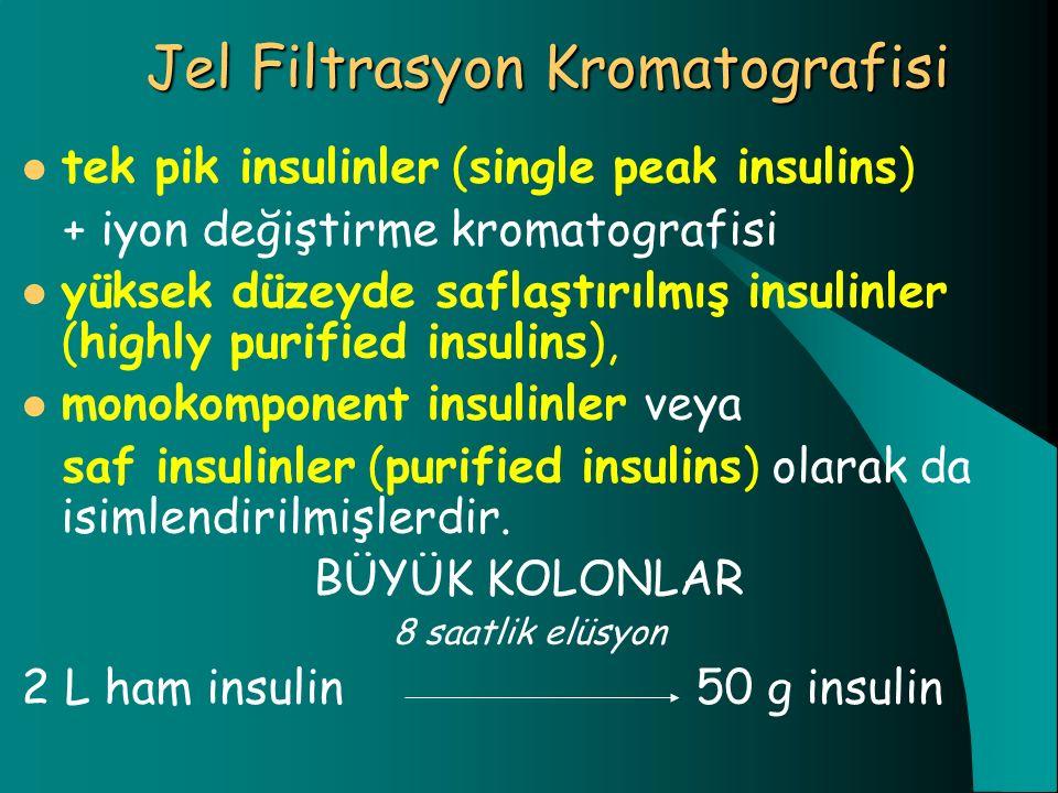 Jel Filtrasyon Kromatografisi