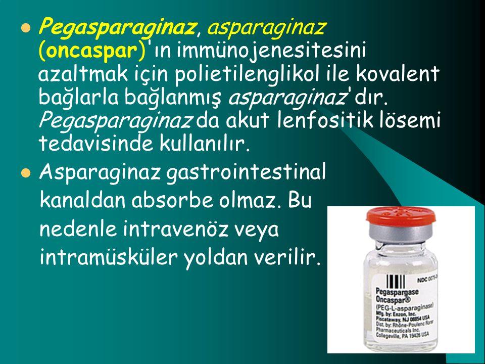 Pegasparaginaz, asparaginaz (oncaspar) ın immünojenesitesini azaltmak için polietilenglikol ile kovalent bağlarla bağlanmış asparaginaz dır. Pegasparaginaz da akut lenfositik lösemi tedavisinde kullanılır.