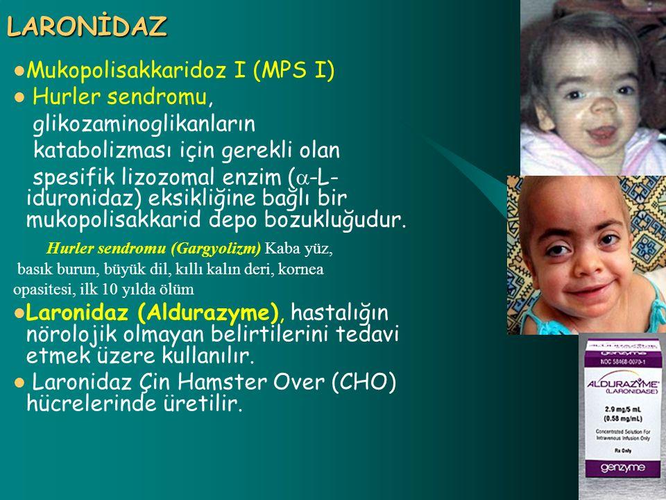 LARONİDAZ Mukopolisakkaridoz I (MPS I) Hurler sendromu,