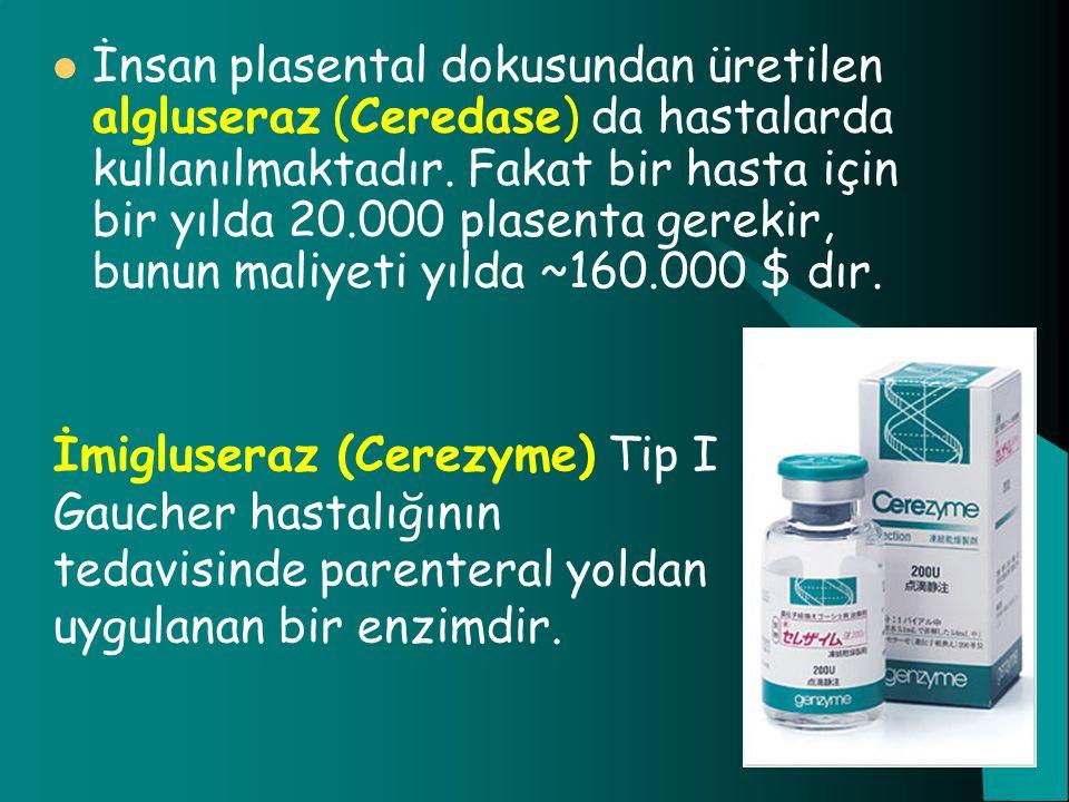 İnsan plasental dokusundan üretilen algluseraz (Ceredase) da hastalarda kullanılmaktadır. Fakat bir hasta için bir yılda 20.000 plasenta gerekir, bunun maliyeti yılda ~160.000 $ dır.