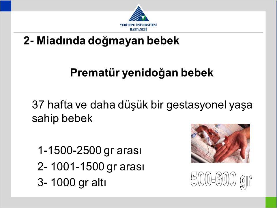 Prematür yenidoğan bebek