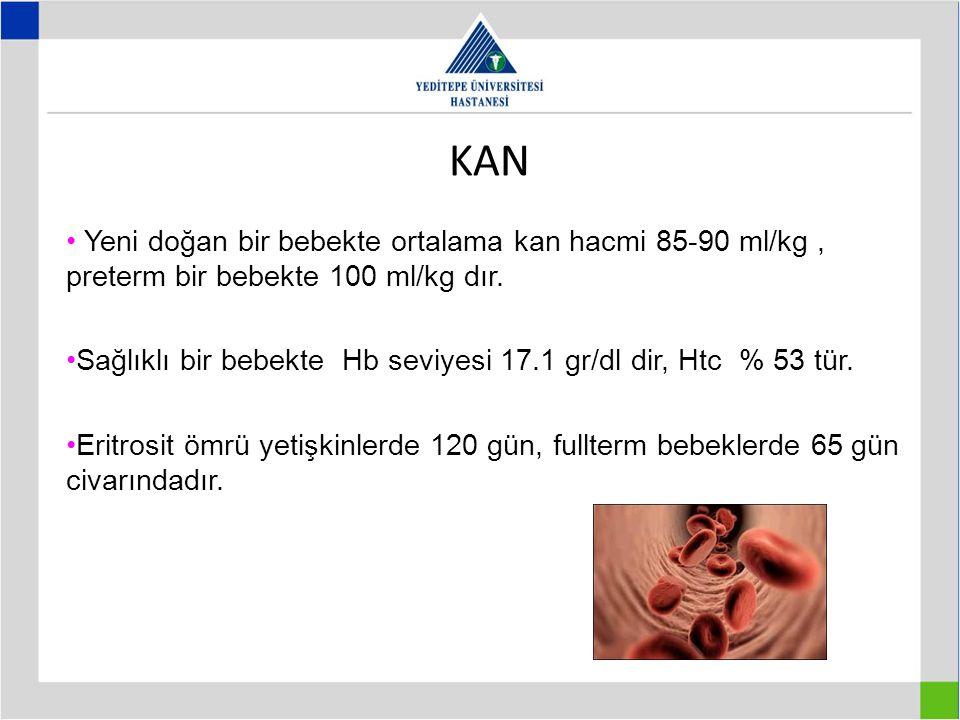 KAN Yeni doğan bir bebekte ortalama kan hacmi 85-90 ml/kg , preterm bir bebekte 100 ml/kg dır.