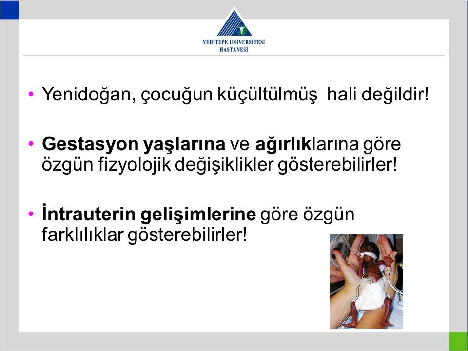 Yenidoğan, çocuğun küçültülmüş hali değildir!