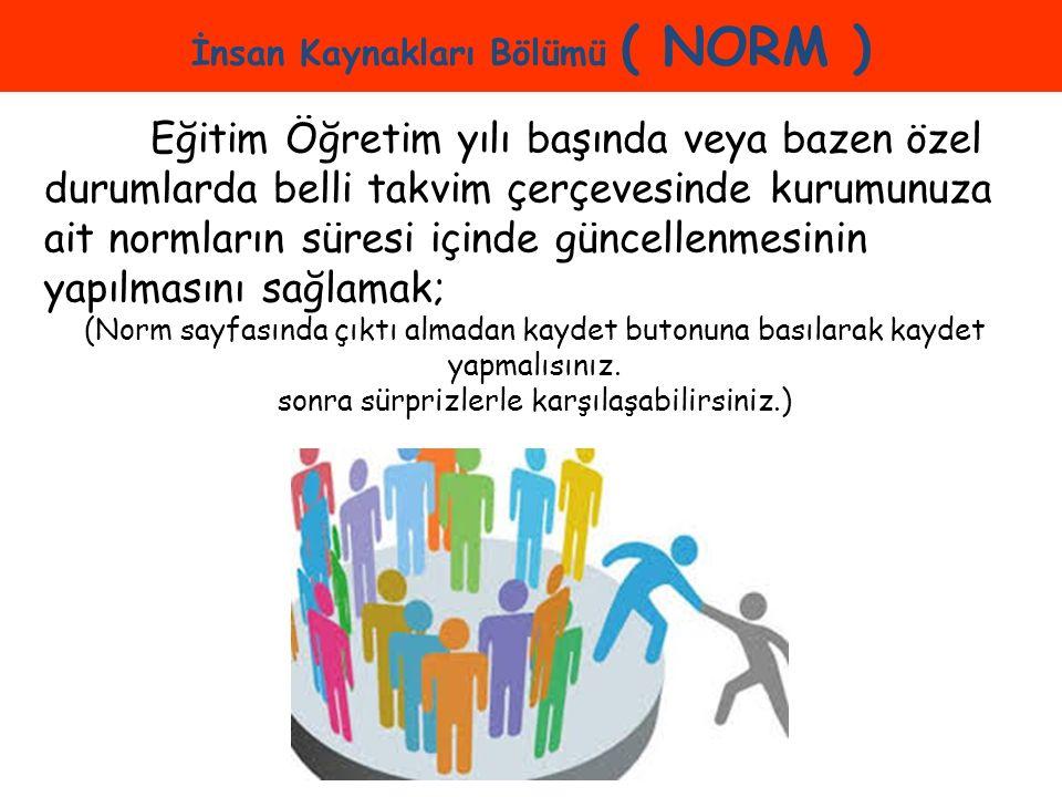 İnsan Kaynakları Bölümü ( NORM )