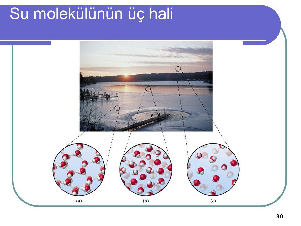 Su molekülünün üç hali
