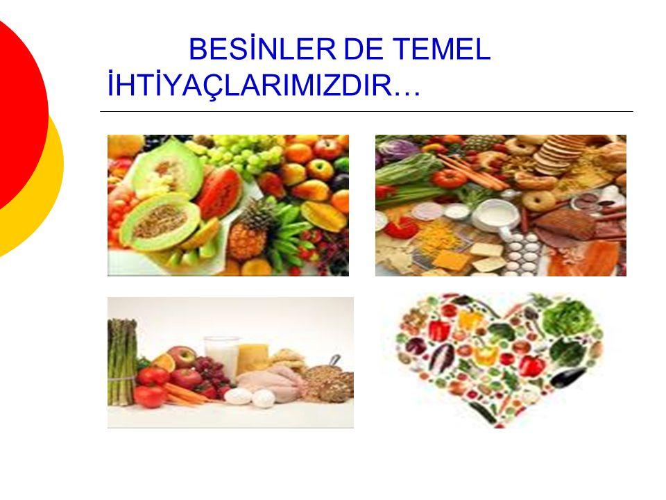 BESİNLER DE TEMEL İHTİYAÇLARIMIZDIR…