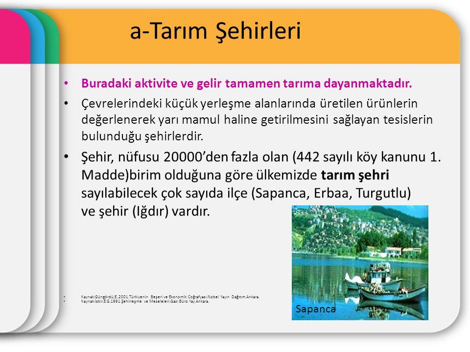 a-Tarım Şehirleri Buradaki aktivite ve gelir tamamen tarıma dayanmaktadır.