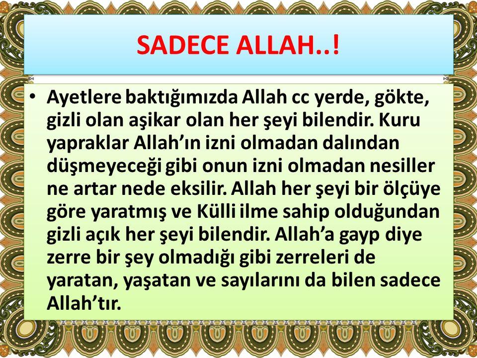 SADECE ALLAH..!