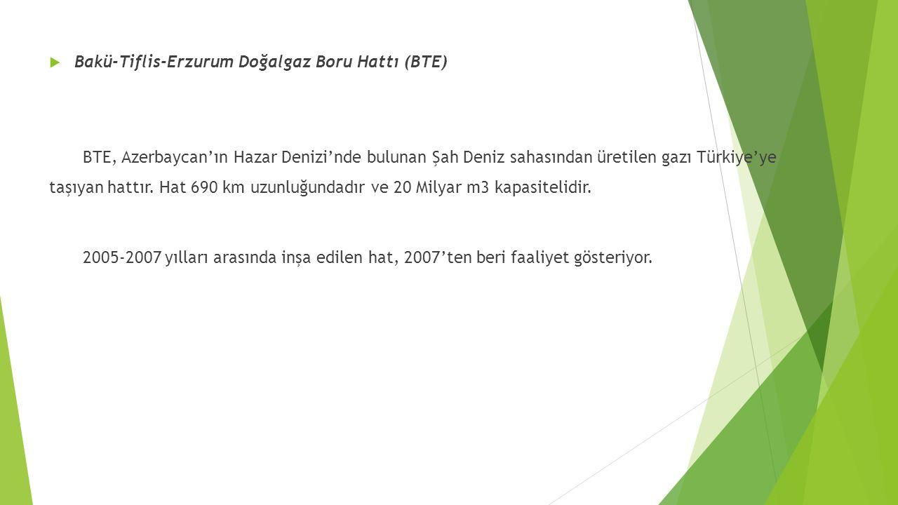 Bakü-Tiflis-Erzurum Doğalgaz Boru Hattı (BTE)