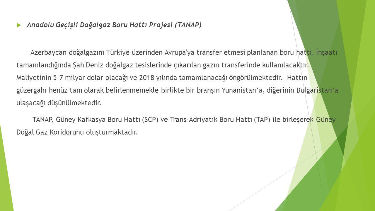 Anadolu Geçişli Doğalgaz Boru Hattı Projesi (TANAP)