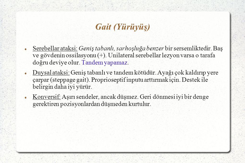Gait (Yürüyüş)