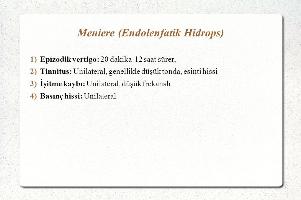 Meniere (Endolenfatik Hidrops)