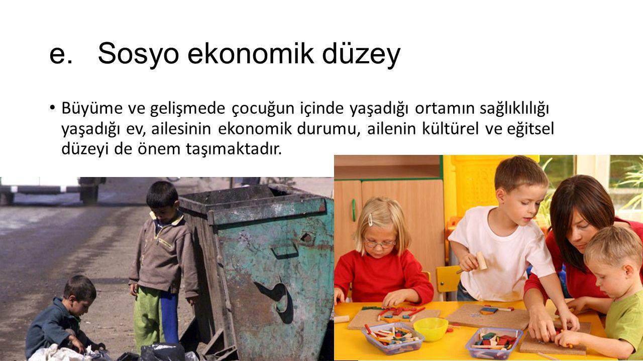 e. Sosyo ekonomik düzey