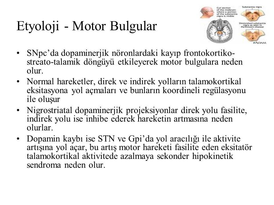 Etyoloji - Motor Bulgular