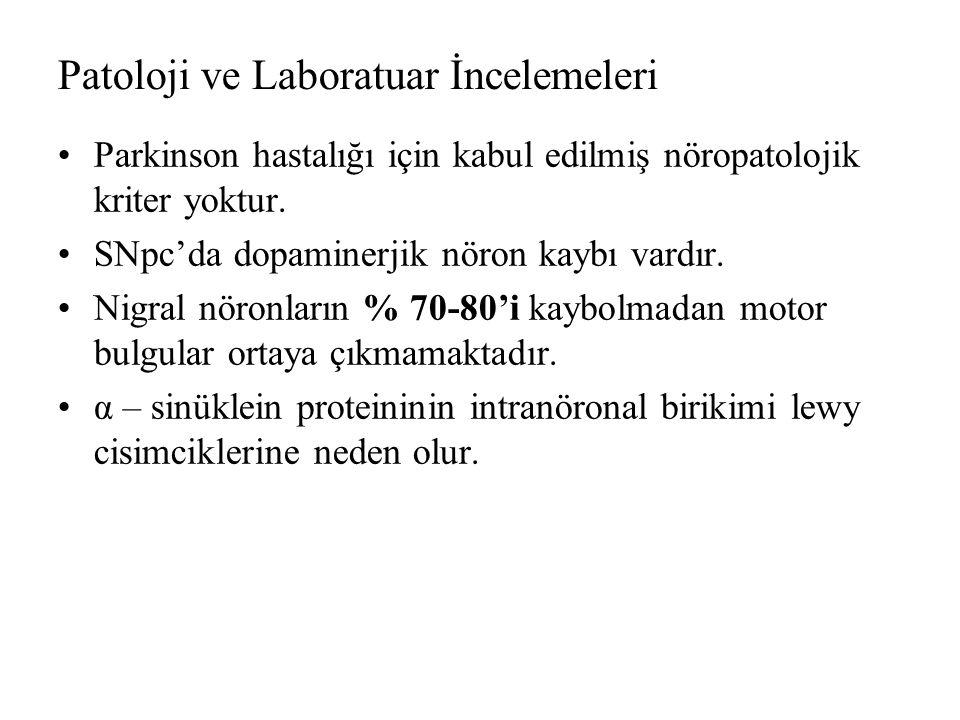 Patoloji ve Laboratuar İncelemeleri