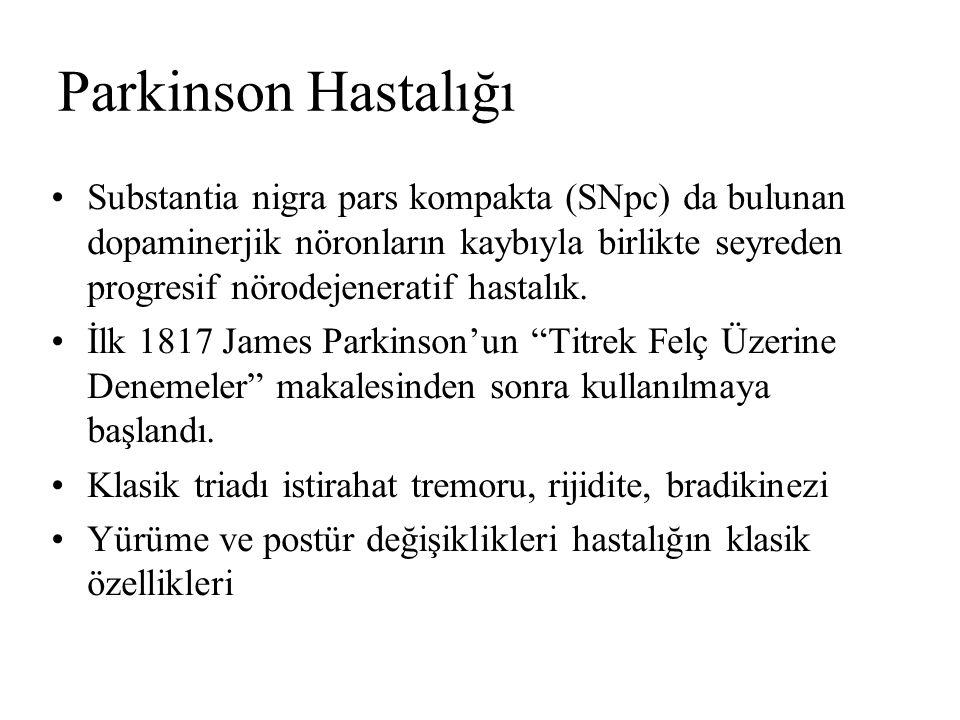 Parkinson Hastalığı