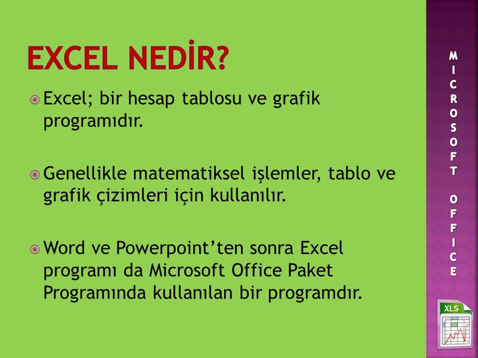 EXCEL NEDİR Excel; bir hesap tablosu ve grafik programıdır.